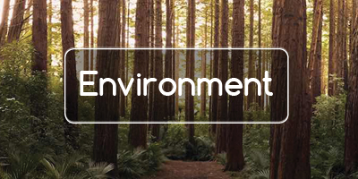 BFG Environmental Focus